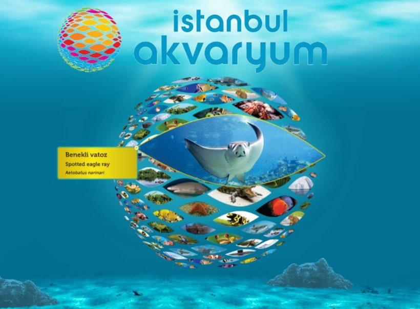 istanbulakvaryum